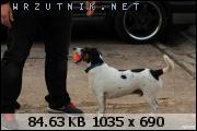 dafota.2.4p31446410107t.JPG.sm287.JPG&th=5581