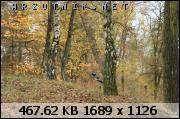 dafota.2.qbw1382985732i.jpg.smmoje zdjęcia 136.jpg&th=3613