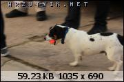 dafota.2.y681446410107e.JPG.sm286.JPG&th=7218