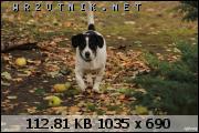 dafota.2.zsx1446406598i.JPG.sm178.JPG&th=4321