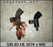 bfi1291909211i.jpg