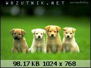 rgh1308409606k.jpg