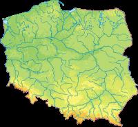 Zloty Ogólnopolskie